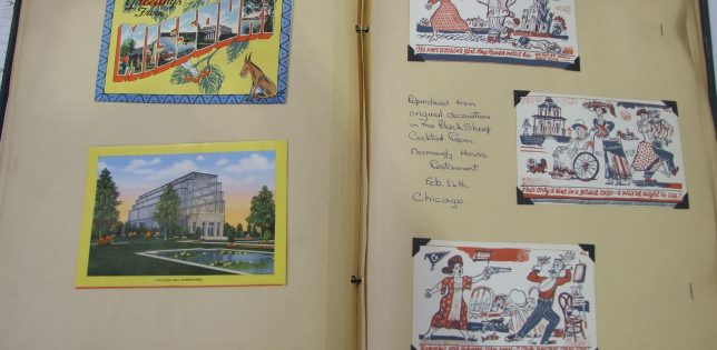 Some of Elaine's many postcards she collected on her travels.