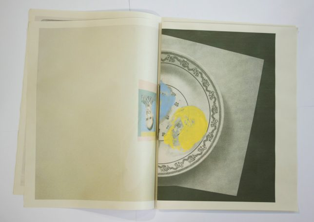 Sarah Wright, Horses, 2012 (interior example pages)