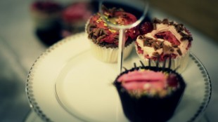 Cupcakes (small group)
