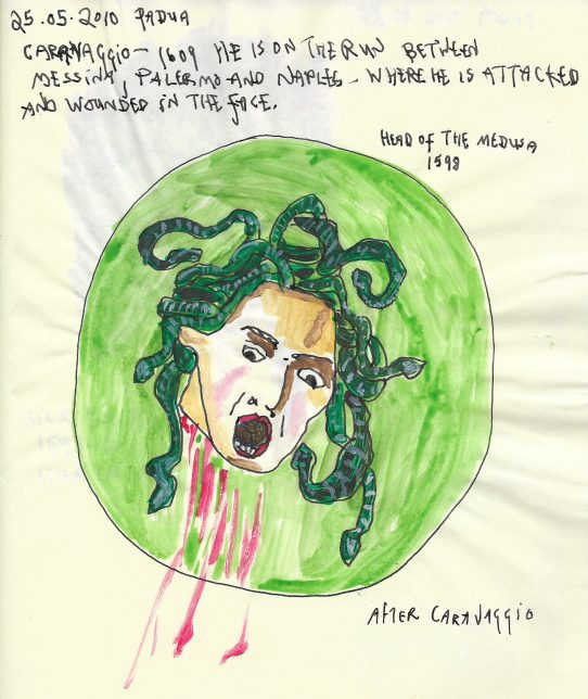 Drawing of Medusa's head (from Greek mythology winged human female with living venomous snakes in place of hair) on a circle of green.