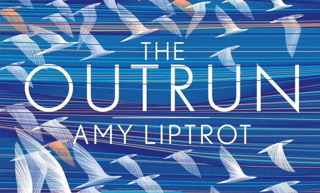 Book cover for The Outrun. It is blue and has white bird illustrations flocking all over the cover