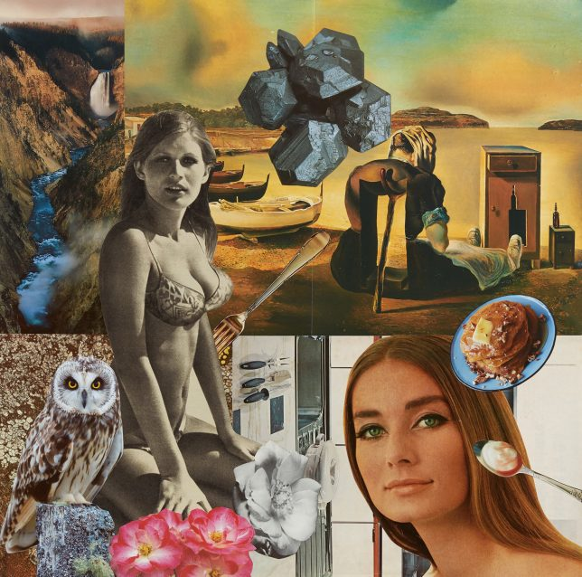 Complex collage image showing a women in a bikini, what might be surrealist artwork, an owl, some cutlery with food, some flowers and a river.