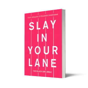 Slay In Your Lane Book Image