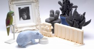 A photograph of a mixed media artwork. The artwork is Home Ornaments, 2002 – 5, by Daphne Wright. It appears as an arrangement of miniature figures, a parrot, a blue hamster, a photo frame with a photo of a monkey in it. Some grey cacti and model figure of a building.