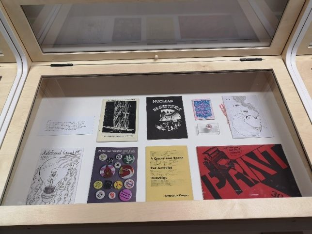 A display cabinet photographed from above, showing a selection of zines