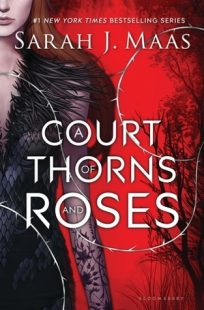 A book called A Court of Thorns and Roses