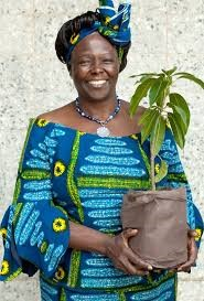 Colour pic of Wangari Maathai