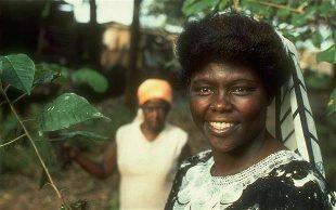 Young Wangari Maathai Open the Door 2020