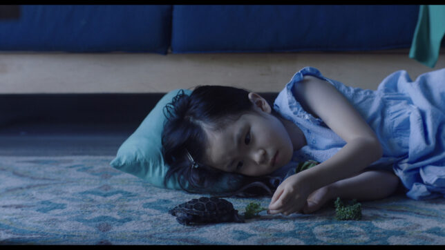 still taken from a film. A little girl lying on the floor in a dimly lit room, feeding a small tortoise some broccoli.