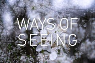 Ways of Seeing. Credit: Ilisa Stack / Shutter Hub