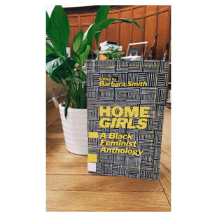 """the book """"Home Girls"""" sits on a table in front of a small peace lily which sits in a white plant pot"""