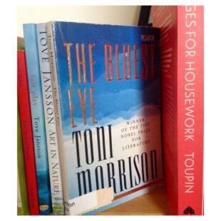 books sit side by side on a shelf, Toni Morrison's The Bluest Eye is the focal point