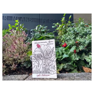 """the book """"Purple Hibiscus"""" is sitting on a wall in front of foliage"""