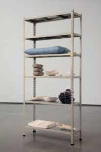 A photograph of Veronica Ryan's sculpture Particles a freestanding shelf holding various clay and fabric items in subdued colours.